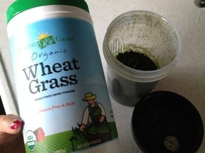【青汁】小麦若葉 ウィートグラスパウダー 酵素が活きてるAmazing Grass Wheat Grass
